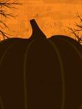 Halloween grunge poster orange Stock Photos