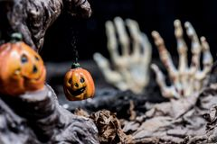 Halloween. Pumpkin, trick or treat in autumn season Stock Photography
