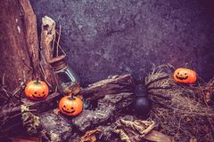 Halloween. Pumpkin, trick or treat in autumn season Stock Photo
