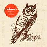 Halloween hand drawn illustration Stock Photos