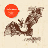 Halloween hand drawn illustration Stock Image