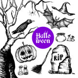 Halloween Hand Drawn Set Stock Photos