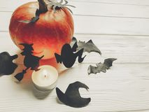 Halloween. happy halloween concept. pumpkin with witch ghost bat. S and spider black decorations on white wooden background. cutouts for autumn holiday Stock Photos