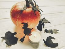 Halloween. happy halloween concept. pumpkin with witch ghost bat. S and spider black decorations on white wooden background. cutouts for autumn holiday Royalty Free Stock Photography