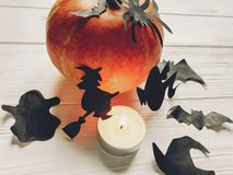 Halloween. happy halloween concept. pumpkin with witch ghost bat. S and spider black decorations on white wooden background. cutouts in light, seasonal greetings Royalty Free Stock Photography