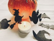 Halloween. happy halloween concept. pumpkin with witch ghost bat. S and spider black decorations on white wooden background. cutouts in light, seasonal greetings Royalty Free Stock Photo