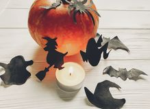 Halloween. happy halloween concept. pumpkin with witch ghost bat. S and spider black decorations on white wooden background. cutouts in light, seasonal greetings Stock Photos