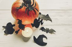 Halloween. happy halloween concept. pumpkin with witch ghost bat. S and spider black decorations on white wooden background. cutouts for autumn holiday Stock Photography