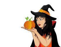 Halloween. A happy woman in a hat and a witch costume holds pumpkin. Halloween. A happy woman in a hat and a witch costume holds a pumpkins in her hands. Wow Stock Photography