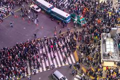 Unbelievable crowd of people in shibuya district during halloween celebration. royalty free stock photos