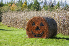 Halloween Hay Bale Stock Images