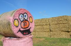 Halloween Hay Bale in Gervis, Oregon. This is a rolled hay bale at Bauman Farm in Gervis, Oregon decorated for Halloween with a pumpkin face.  It is next to a Stock Photography