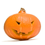 halloween head pumpa Royaltyfri Foto