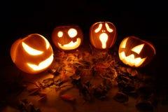 Halloween-hefboom-o-lantaarn pompoenen Stock Foto