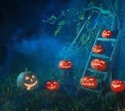 Halloween-hefboom-o-lantaarn pompoenen Royalty-vrije Stock Fotografie