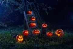 Halloween-hefboom-o-lantaarn pompoenen stock afbeeldingen