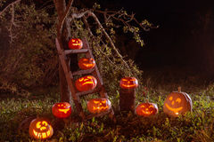 Halloween-hefboom-o-Lantaarn pompoenen openlucht royalty-vrije stock afbeelding