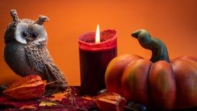 Halloween-Herbstdekoration mit Kürbis, netter Eule und roter Kerze auf Blattorangenhintergrund stockfoto