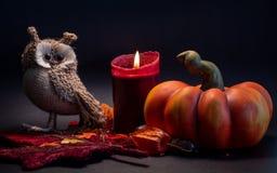 Halloween-Herbstdekoration mit Kürbis, netter Eule und roter Kerze auf orange Farben der Blätter auf schwarzem Hintergrund lizenzfreies stockfoto