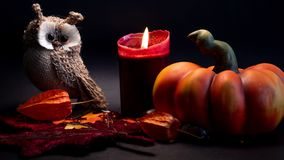 Halloween-Herbstdekoration mit Kürbis, netter Eule und roter Kerze auf orange Farben der Blätter auf schwarzem Hintergrund stockfotografie