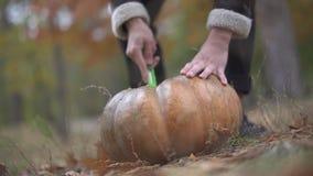 Halloween Het mannetje hakt een pompoen met een slagersmes stock videobeelden