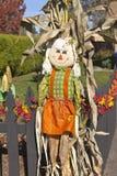 Halloween-het symbool van de decoroogst. Royalty-vrije Stock Foto