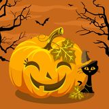 Halloween heureux avec le potiron et le chat Photos stock