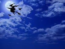 Halloween-Hexe-Flugwesen auf Broomstick Lizenzfreie Stockbilder