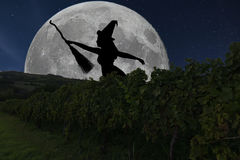 Halloween-Hexenschattenbildfliegen mit Besenstiel Vollmond Vin lizenzfreie stockfotografie