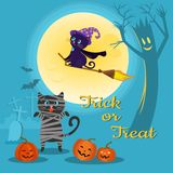 Halloween-Hintergrund mit Katze und Kürbis vektor abbildung