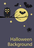 Halloween-Hintergrund mit netten Tieren Lizenzfreies Stockfoto
