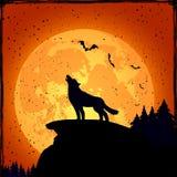 Halloween-Hintergrund mit Wolf Stockfotografie