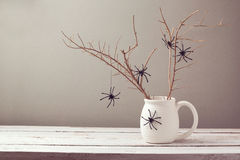Halloween holiday background with spiders Stock Photos