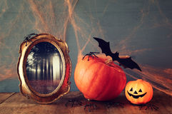 Halloween holiday concept. Cute pumpkin, bats and old frame Stock Image