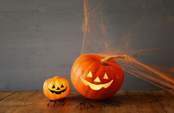 Halloween holiday concept. Cute pumpkin on wooden table Stock Image