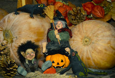 Halloween holiday concept photo.Cute pumpkins and witch. royalty free stock images