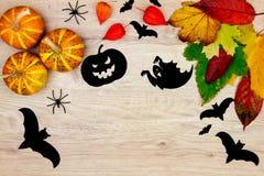 Halloween holiday decoration Royalty Free Stock Photos