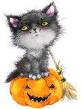 Halloween holiday little cat witch and pumpkin. Watercolor illustration