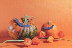 Halloween home decorations on orange background Royalty Free Stock Photos