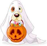 Halloween-hond stock illustratie