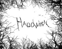 Halloween horror forest Royalty Free Stock Images