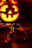 Halloween horror Royalty Free Stock Photos