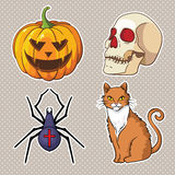 Halloween icons set: pumpkin, skull, spider, cat. Stock Photo