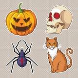 Halloween icons set: pumpkin, skull, spider, cat. Stock Photo