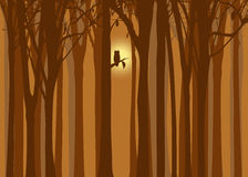 Halloween illustration autumn forest with owl stock photo
