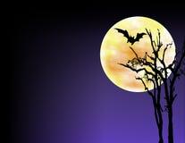 Halloween Illustration Background Stock Images
