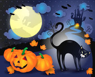 Halloween illustration with black cat and pumpkins Stock Image