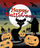 Halloween illustration. Black cat and pumpkins. Royalty Free Stock Images
