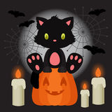 Halloween illustration with black kitten sitting on the pumpkin. With candles Royalty Free Stock Photo