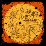 Halloween illustration with net pattern Stock Photography